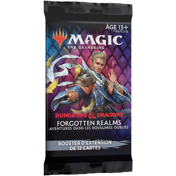 adventures in the forgotten realms extension booster